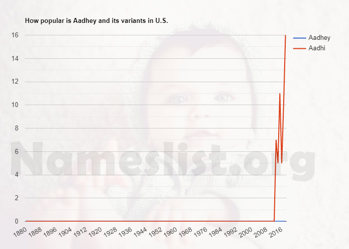 Popularity of Aadhey and variations in U.S.